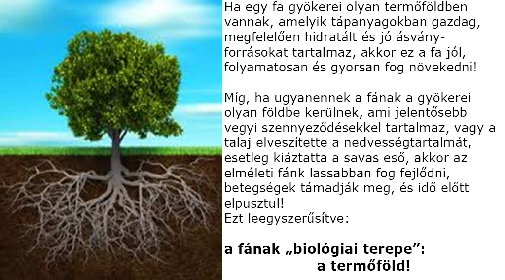 Biológiai terep