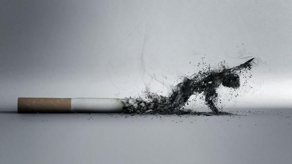 a cigi halálos