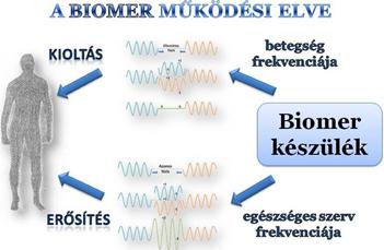 A biomer működési elve